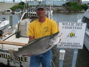 Willie Bee Brown Trout